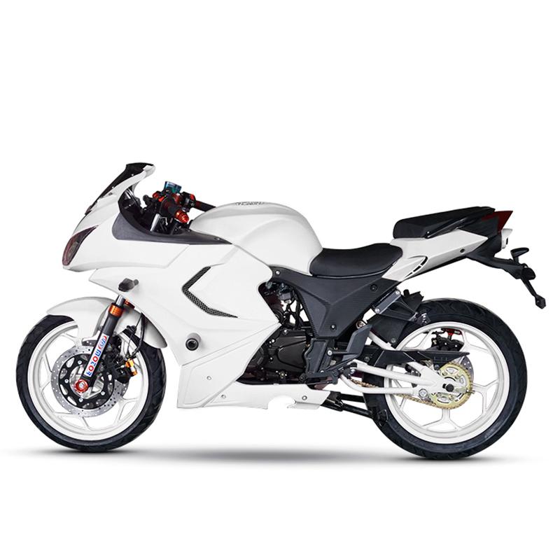 世界摩托车跑车品牌_风感觉摩托车跑车北极光150-250cc大型地平线助力车公路赛街车趴 ...