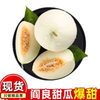 恋潮 陕西阎良甜瓜4.5斤【拍2件发9斤】新鲜应当季时令水果脆甜白玉小瓜